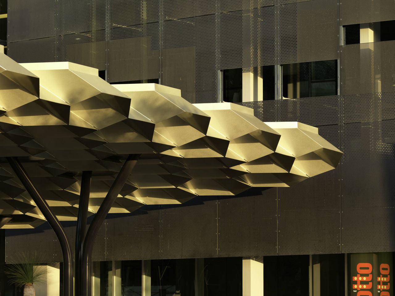 Maddison Architects Cloud Canopy